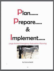 Plan Prepare & Implement Book by Victoria Beelik